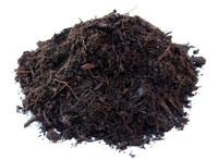 Compost vegetal