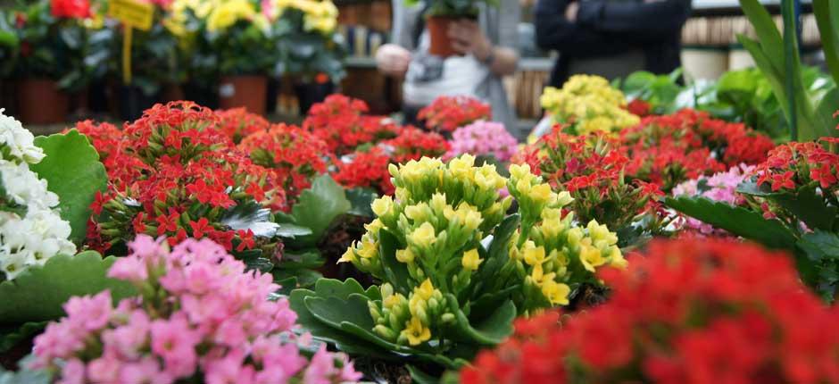 productos-para-jardineria